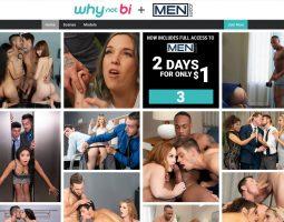 WhyNotBi Porn Site Is A Unique Site Focusing More On Gay Men